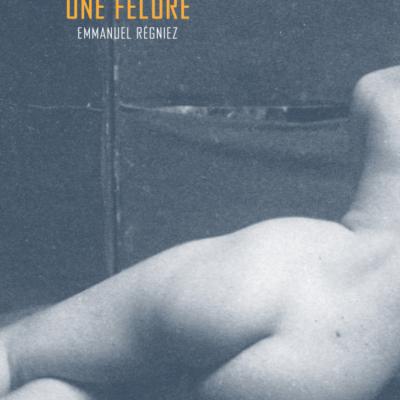 Une fêlure, d'Emmanuel Régniez : un masque, un conte, une vie en porcelaine