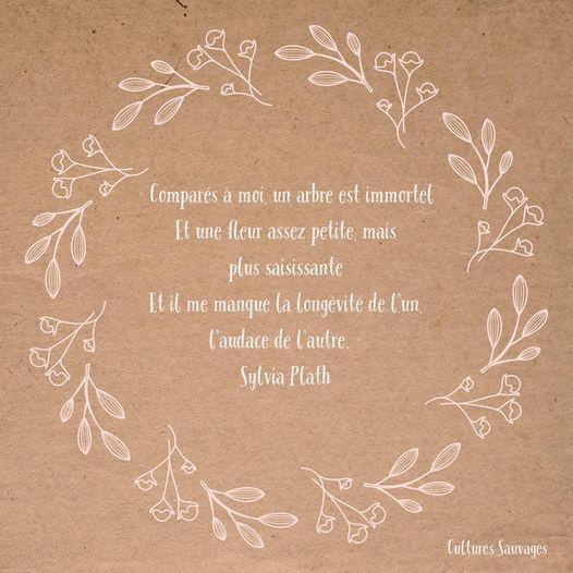 [Paroles de poétesses] : Sylvia Plath