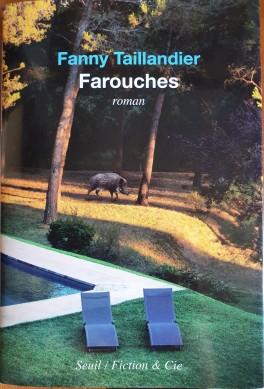 Interview de Fanny Taillandier : «Les romans, c'est l'endroit où l'on peut toujours sauter la clôture, faire le mur».